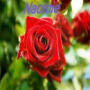 helderziend medium Naomie - beschikbaar